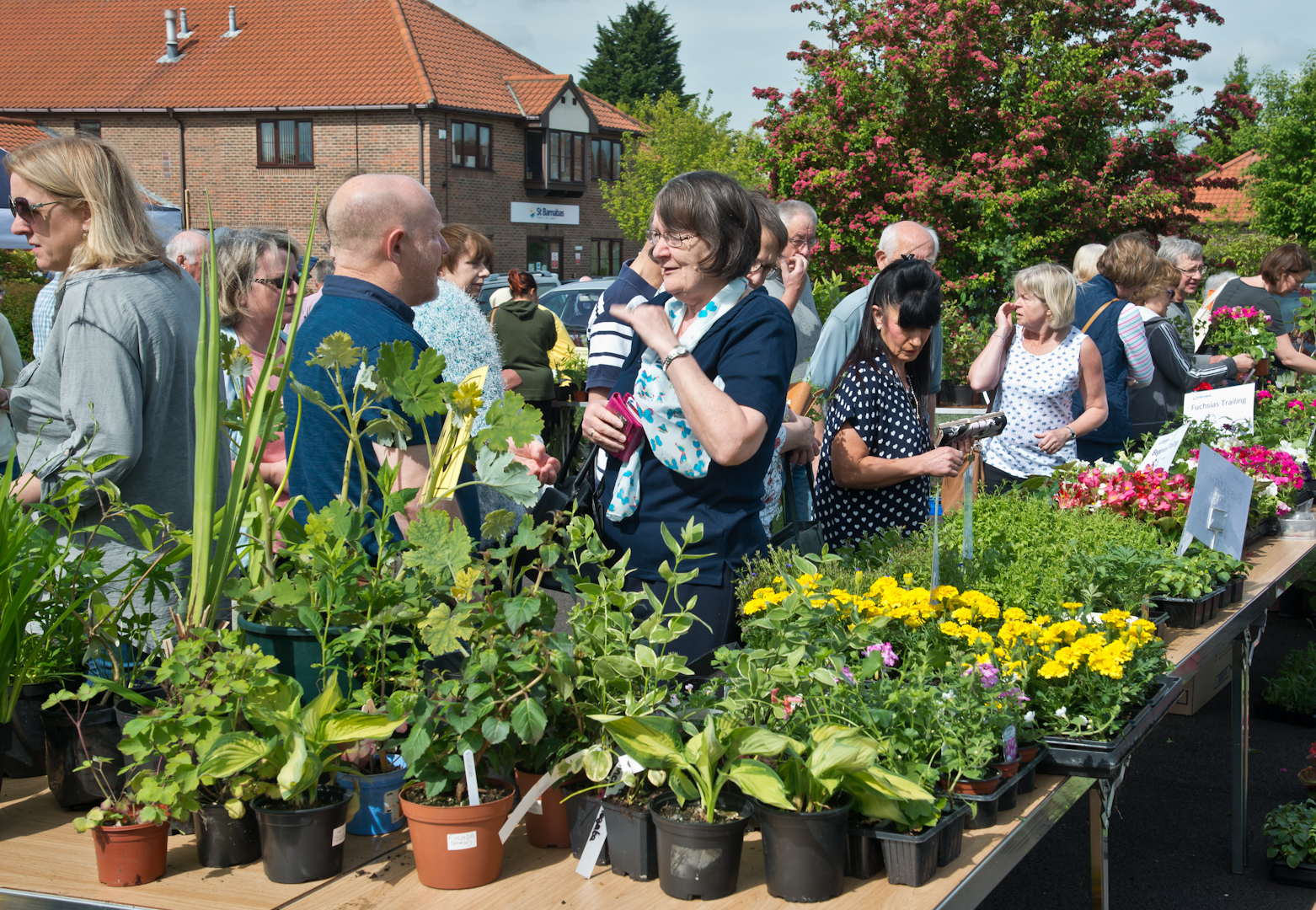 St Barnabas Hospice will be hosting their annual Cream Tea & Plant Sale